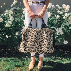 c2ae46f50cc2 23 Best // velvet & leopard // images in 2019 | Animal prints ...