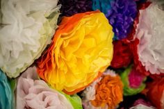 Paper flower walls f