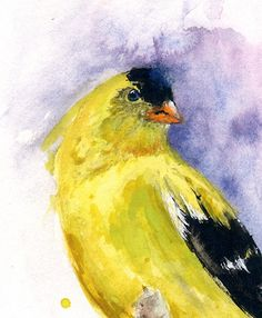 AMERICAN GOLDFINCH PAINTING  watercolor bird by SignedSweet