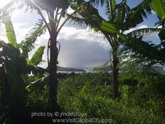 Wallis and Futuna City - Bing Images