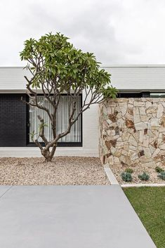 FRONT FACADE & ENTRY | OAK & ORANGE Palm Springs Style, Orange House, Desert Homes, Flat Roof, Live In The Now, Coastal Homes, Mid-century Modern, Modern Family, The Great Outdoors