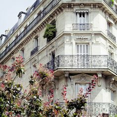 There is nothing like the style of Parisian buildings (the ones in the arrondissements les plus chics, au moins!)