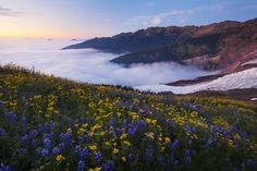 Mt. Baker, Washington State