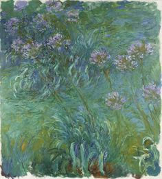 Agapanthus  Claude Monet (French, 1840-1926)    1914-26. Oil on canvas