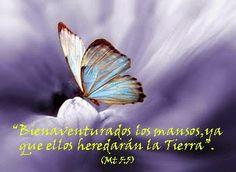 """Nuevos Arquetipos: La Religión del Padre: """"Las Bienaventuranzas"""" 3ª p..."""