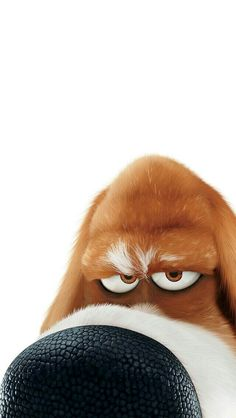 List of 11 best Funny Wallpapers Cartoons in week 15 Funny Phone Wallpaper, Disney Phone Wallpaper, Animal Wallpaper, Cute Cartoon Wallpapers, Cartoon Pics, Foto Picture, Funny Animals, Cute Animals, Cute Disney Drawings