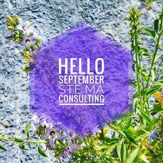 Hello September ! _________ 🍀🍀🍀🍀🍀🍀🍀 #stemaconsulting #stema #september #helloseptember #newmonth #post #nature #greece #lifo #epirus #hello #purple #flower Hello September, New Month, Marketing, Instagram Posts