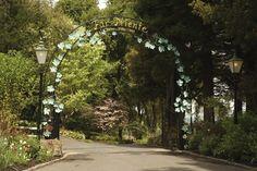 Far Niente Winery - gardens as wonderful as the wine!