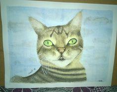 Suluboya resmim, kedim Işık. Watercolor Paint, my cat Işık