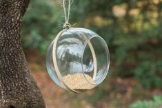 DIY: Bird Feeder from an Embroidery Hoop | HGTV >> http://www.hgtv.com/design/make-and-celebrate/handmade/diy-upcycled-bird-feeder?soc=pinterest