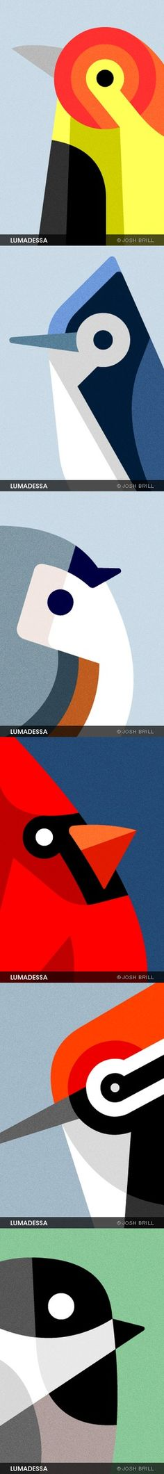 The bird is the word...which one is your favorite? Thanks to @Josh Brill of Lumadessa.