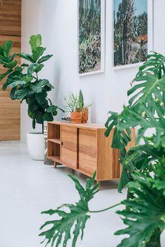 Pop & Scott 'Rocky Side Board' / White P&S Pot / Anchor Ceramic terracotta planters / Lisa Sorgini Cactus Prints Image by Bobby + Tide