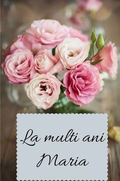 Name Day, Happy Birthday, Rose, Creative, Gifts, Pretty, Quotes, Birthday, Ideas