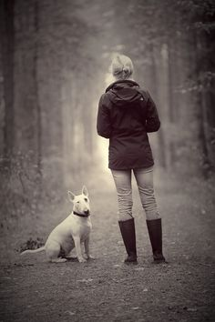 #Bull #Terrier with lady