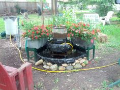 BACKYARD SUSTAINABILITY – A FINAL LOOK AT THE AQUAPONIC POND & GARDEN
