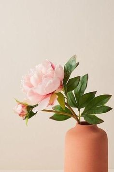 Peonies Discover Gorgeous Faux Plants for Those Who Dont Have a Green Thumb! Gorgeous Faux Plants for Those Who Dont Have a Green Thumb! Tableaux D'inspiration, Deco Nature, Faux Plants, Flower Aesthetic, Peony Flower, Cactus Flower, Pink Peonies, Yellow Roses, Pink Roses