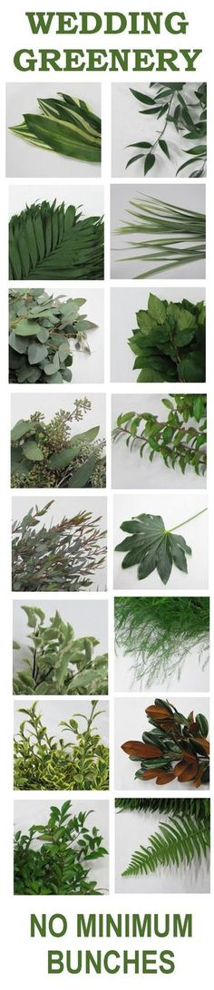 weddng greenery / http://www.himisspuff.com/greenery-wedding-color-ideas/