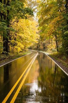 A rainy autumn morning in Visit Mercer County PA, Mercer County, In The Beginning God, Autumn Morning, Rainy Days, Newcastle, Paths, Natural Beauty, Reflection, Country Roads