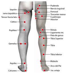 Puntos: piernas