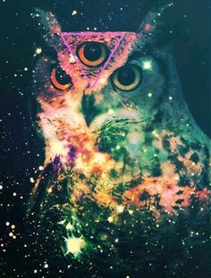 Spiritual Owl ( Night Eagle ) has the ability to protect us psychically and physically, by warding off demon spirits. Owl's x-ray vision eye's allows him to see in and through the darkness, and beyond the veil, into the world of spirit.