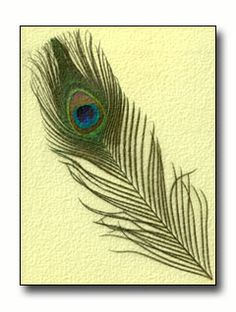 I could so do this! :)... Hot glued a similar feather to a white canvas...simple! Love it!