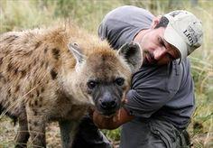 kevin richardson zoologo - Cerca con Google