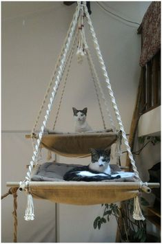 Animal Projects, Diy Projects, Macrame Projects, Diy Cat Tree, Cat Trees, Cat Playground, Playground Design, Cat Hammock, Cat Room