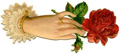 Victorian Graphic - Ladies Hand with Red Rose - The Graphics Fairy