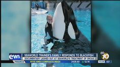 I would like to point out that blackfish criticizes SeaWorld for making money off animals. Well, blackfish is making money off animals (Tilikum) AND exploiting the death of a trainer. They are lying, using misleading videos and half quotes to paint a false story. Just remember, Dawns family supports Sea World. In fact, during 2015 Wild Day Weekends, I went to a show for Julie Scardina and guess what, Dawns Mother was a guest there and Julie took the opportunity to pay tribute.