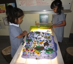 Friends collaboratively designing a natural pond fit for frogs and bugs.