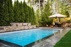 S.E.O Backyard pool and fountain