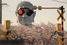 グラサン大仏と言うのですか!?。いい〜〜ショットです。 豊川のおぐりん @Kiha85Nanki グラサン大仏こと布袋の大仏様周辺の桜、今が見ごろです! https://mobile.twitter.com/Kiha85…/status/852133381613670400 ツイッター