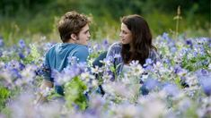 Bella and Edward twilight saga