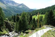 Talblick  vom Restaurant Alp Campo aus einen Blick ins Tal