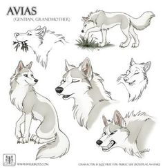 Avias, age 23 moons, red team, she is second lead dog. ( open space )