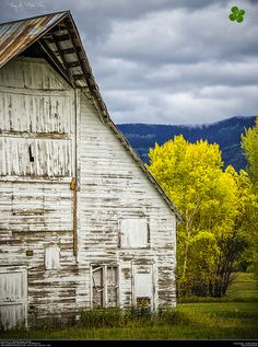 Country Living ~ Routt County 14. Steamboat Springs, Colorado.