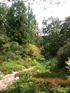 National Arboretum  Asia Valley