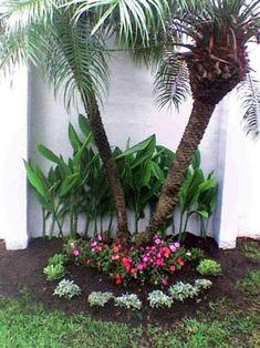 Beginner's Guide To Tropical Landscaping Design Plans – My Best Rock Landscaping Ideas Florida Landscaping, Tropical Landscaping, Tropical Garden, Landscaping Ideas, Landscaping Around Trees, Front Yard Landscaping, Front Garden Landscape, Landscape Design, Little Gardens