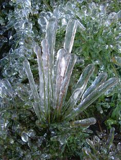 more ice sculpture grass