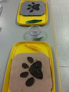 """Vet/pet clinic- boards are felt and vinyl, get the """"thorns"""" out of the paw. Use misc. things such nails or pine needles as thorns. Great fine motor skills with tweezers"""