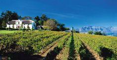 De Toren Winery - Stellenbosch, South Africa