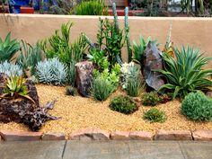 Succulent Gardens Front Yard Succulent Landscaping Ideas Landscape