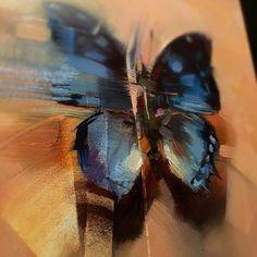 Still Life — Lindsey Kustusch Butterfly Painting, Butterfly Art, Insect Art, Matte Painting, Aesthetic Backgrounds, Beautiful Butterflies, Beautiful Artwork, Art Pictures, Still Life