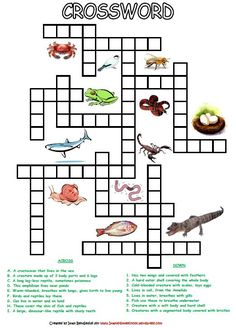 Animal Classification Activity Worksheets | Animal classification ...