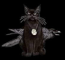 Black Witch Black Cat And Witch Computer Wallpapers