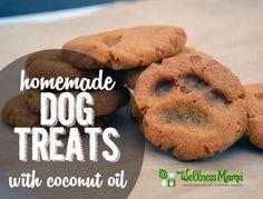 Homemade Dog Treats With Coconut Oil - DIY Gift World