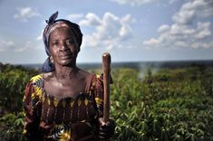 Family farming is the backbone of Africa - FAO and AMARC release audio interviews. In sub-Saharan Africa, almost 239 million people face serious consequences related to food security and nutrition. Family farming is an effective model that can provide solutions to overcome this challenge.