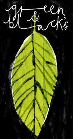 emma lewis drawings + illustrations: g Emma Lewis, Grafic Art, Paper Collage Art, Botanical Drawings, Nature Prints, Illustration Sketches, Art Sketchbook, Book Design, New Art