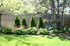 landscaping along a fence | fence landscaping I like the plants in front of the trees