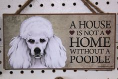 A House is not a Home with a Poodle | Flickr - Photo Sharing!